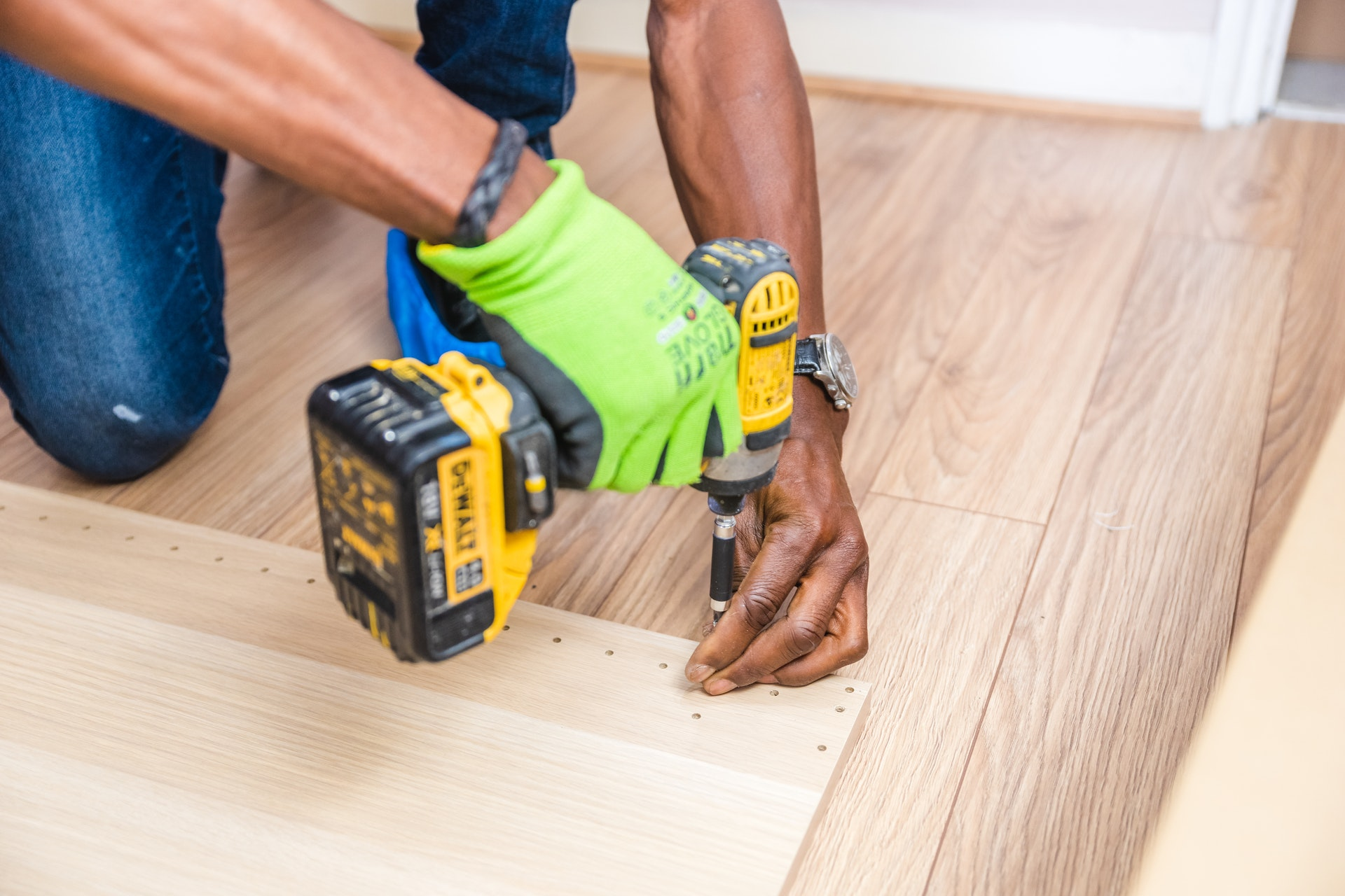 Tips for Taking Care of Pets During Home Renovations